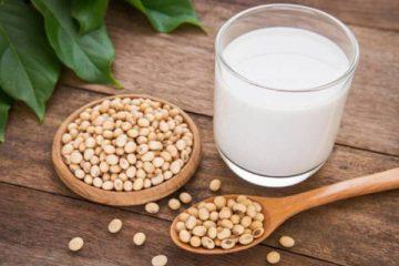 Người Bị Bệnh Sỏi Thận Có Nên Uống Sữa Đậu Nành Không ?