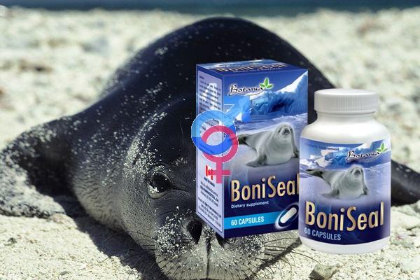 Cách sử dụng thuốc Boni Seal