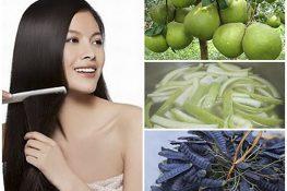 11 cách trị rụng tóc dân gian hiệu quả bạn nên áp dụng thử