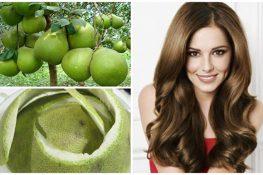 3 Cách trị rụng tóc bằng vỏ bưởi đơn giản cho hiệu quả cao
