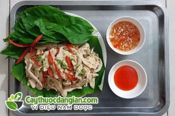 15 Công dụng của Lá Sung món rau ăn nổi tiếng của người Việt