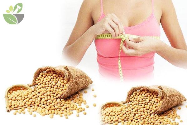 Mầm đậu nành giúp tăng vòng 1