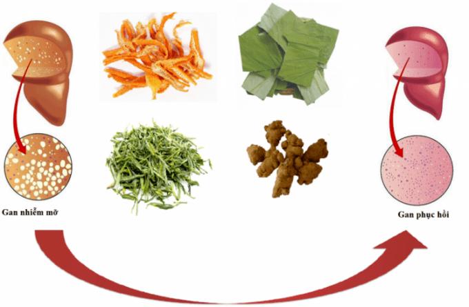 Người-béo-phì-cần-xây-dựng-chế-độ-dinh-dưỡng-nhiều-vitamin-và-rau-xanh-để-điều-trị-gan-nhiễm-mỡ-hiệu-quả