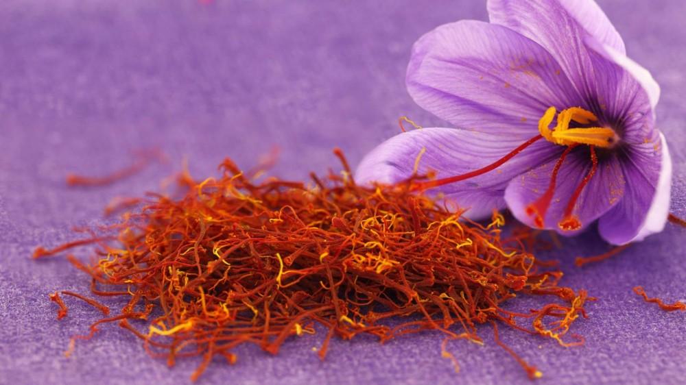 nhụy-hoa-nghệ-tây-saffron-2.